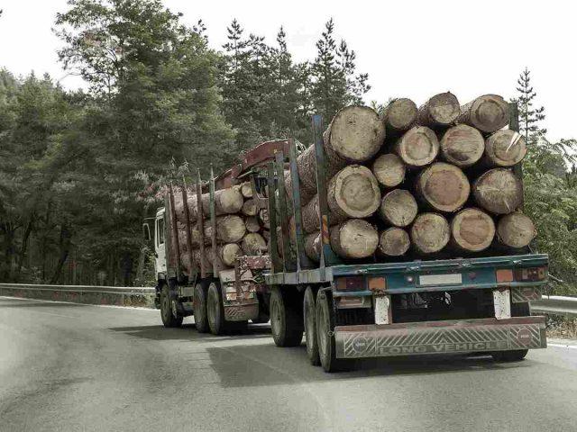 http://erledshipping.com/wp-content/uploads/2017/08/inner_big_trucks_01-640x480.jpg
